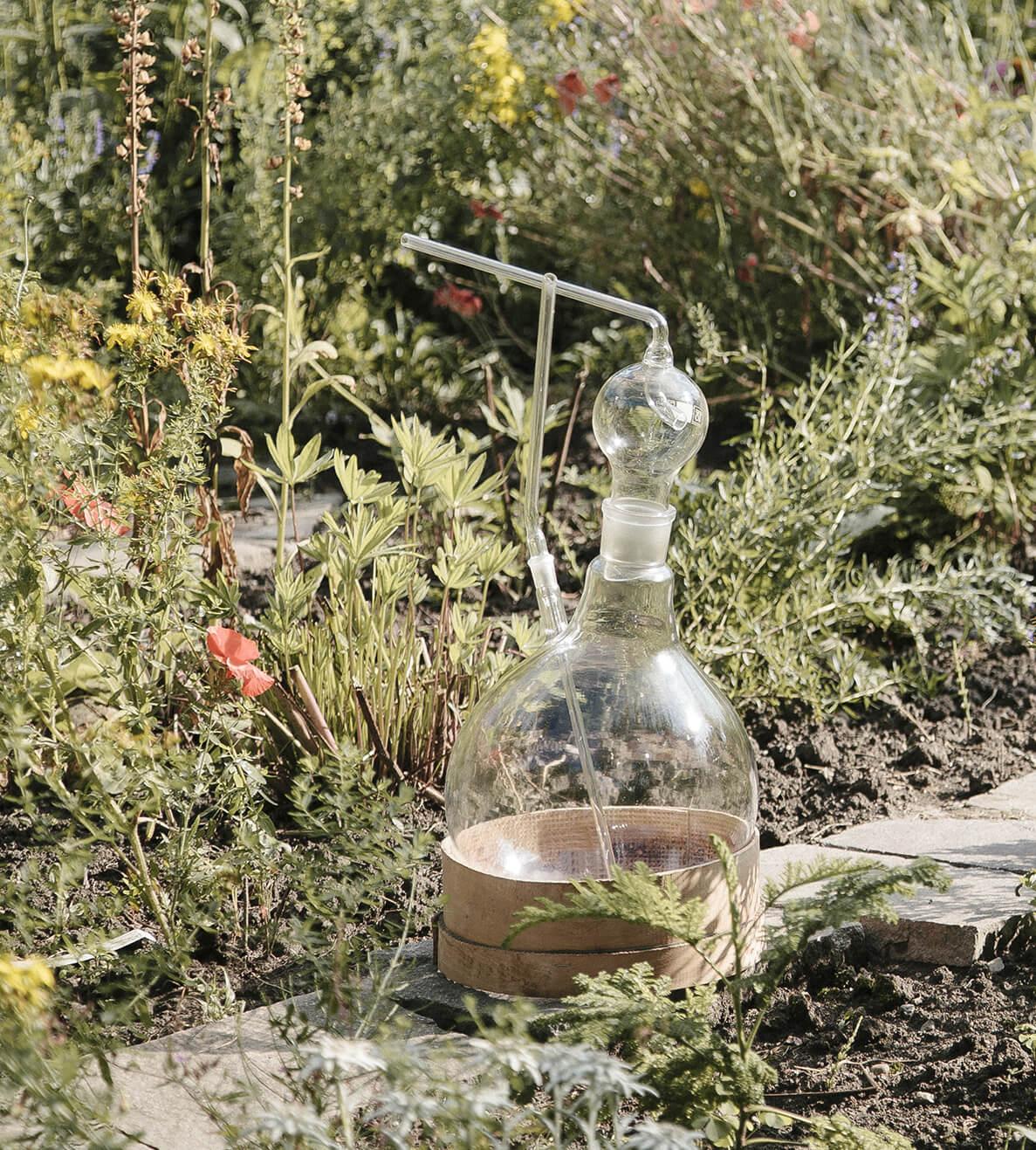 Naturkosmetik biologisch Wirkung