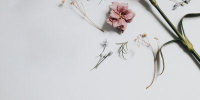 fragrance-header-team-dr-joseph-cosmetics-2